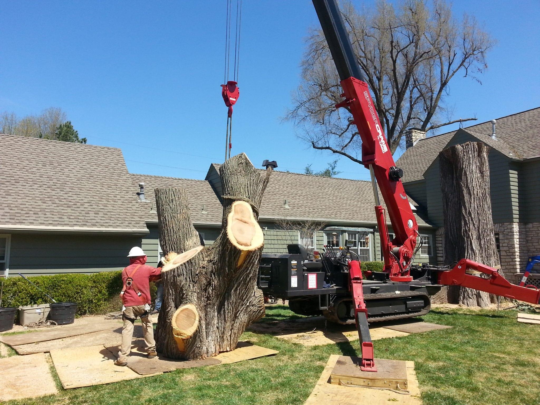 tree crane